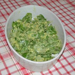 avokado salata-256